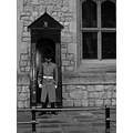 London Tower guard