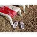 landcape still life summer beach red