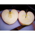 apple fruit heart