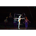 a show that has been running for 19 years finally comes to an end, Alegria by Cirque du Sol is ha...