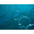 Bubbels Cala Santanyi Diving