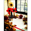 Fine Art Still Life Flower Music Hymn Window Spideyj