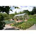 Rosemoor Fruit and Veg garden