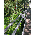bridgedetailfriday ucbfph ucb bridge footbridge berkeley