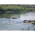 """ Superficial Tension ""