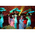 On August 27th 2010, a concert was held in Liuzhou, Guangxi, China as part of the China-Vietnam Y...