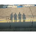 Four shadows over rhe fence