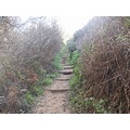 Nature Hiking Trails Pathway