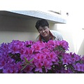 4 years ago... now 2009...i am shy over purple flower