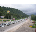 traffic cars road Iran trees jungle