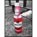 bacardi red watermelon drink alcohol bottle