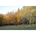 upstate newyork road autumn fall foliage fabius park field trees