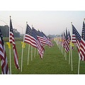 repost...from the healing field...2005...dedicated to those who lost their lives on 9/11/01....ne...