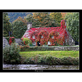 tea room cottage autumn fall virginia creeper river idyll riverside snowdonia