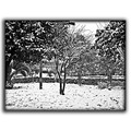 snow cold bad weather bw