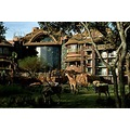 Animal Kingdom orlando hotels Hotels near Universal Orlando Resort orlando