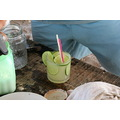 Brasil - RN - 2006 