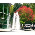 montgomerypark portlandoregon fountain reflectionthursday