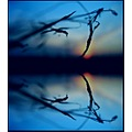 abstract art macro sunset nature blue reflection my visual poetry keit