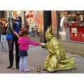 Copenhagen Dwarf Gold Pink Girl 2012 September Denmark