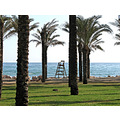 blue sea sky sand beach palms Torremolinos Costa_del_Sol Andalucia Spain home