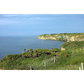 DDay cliff Point du Hoc Normandy France Normandie WWII