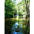 river summer France trees forest water stones landscape countryside