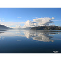 reflectionthursday otago harbour old country dunedin littleollie