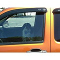 dog dogs Japanese Chin orange truck chevy chevrolet GM Colorado