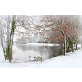 A winter scene of the lakes at Colwick Park.