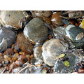 rocks stones water nature