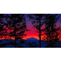 ShutterlySpectacularPhotography Sunrise CapitolForest MtAdams