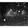 snowstorm night bw