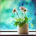 plant gerbera pink window birds