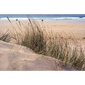 beach sea sand rock meander eoropie ness lewis scotland