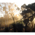 sunrise sunlight dust perth littleollie