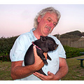 Potbelly piglet Trafalgar KZN South Africa