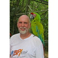 DConway Parrot