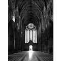 1. Heritage Day at Worcester Cathedral  A rare opportunity to see the floor...usually there are...