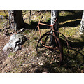 old rusty bike found left two woods landscape