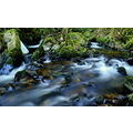 River water flowing fast nature landscape montain
