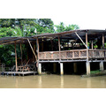 zuiderdam cruise puertolimon costarica jungle bar building