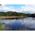 Loch of Lowes Perthshire