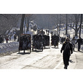 centralpark park newyorkcity ny snow horse carriage people