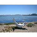 summer park port oakportfph view sanfrancisco bridge dolphin sculpture