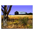 Autumn Farm Barn Ontario SceneByMe