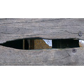 August 2012 - Summer Break   10. Looking through a crack in the pier floorboards just as the ti...