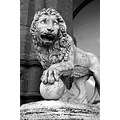 On holiday in Florence.  October/November 2007.