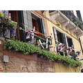 Venice Italy window wind