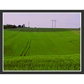 landscape nature hills field sowing pylons electric cable sky clouds fun